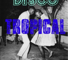 disco tropical